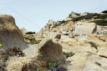Capo Testa in Sardinien