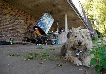 Obdachlose: Heim unter Bruecken