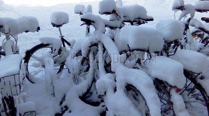 Fahrraeder Schnee