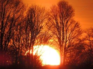 Abendsonne Winter
