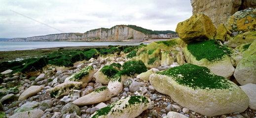 Alabasterk__ste  Normandie  Frankreich