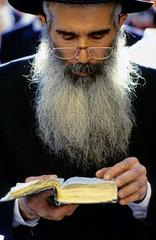 Jude liest in der Tora  Klagemauer  Jerusalem  Israel