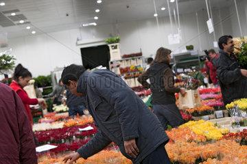 Blumengrossmarkt