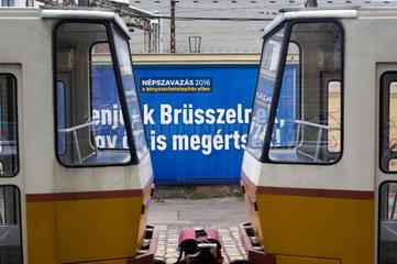EU-Fl__chtlingspolitik  Kampagne zur Volksabstimmung in Ungarn