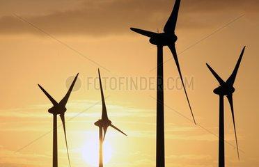 Windkraftanlage an der Nordseekueste