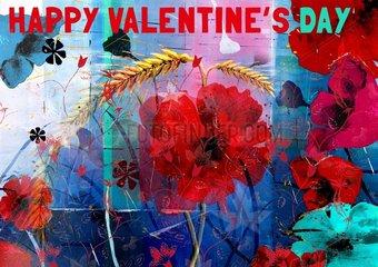 Valentinstag Mohnblumen