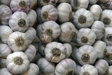 Madeira: Knoblauch in der Markthalle von Funchal