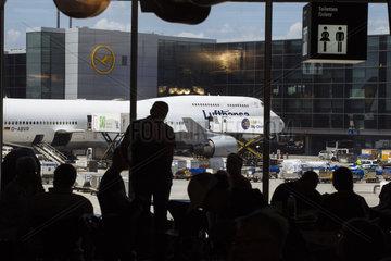Lufthansa Jets am Gate