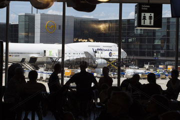 Lufthansa Jets am Gate