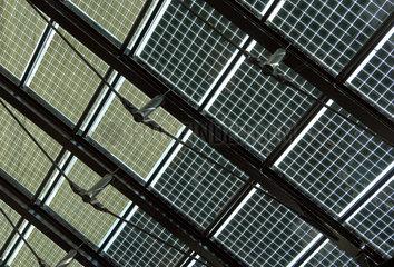 Solarzellen-Dach