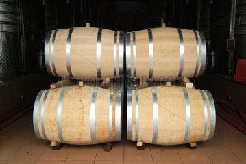 Weingut Chateau Puech Haut