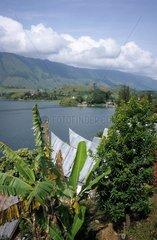 Sumatra  Toba See