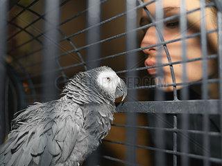 Zwiegespraech mit Papagei