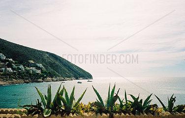 Blick auf die Playa de Portet  Kakteen