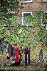Kleidung im Garten