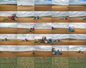 Collage  Feldarbeit