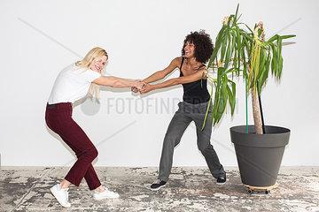 Zwei junge Frauen ziehen sich gegenseitg an einer Zimmerpflanze