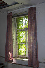 Vergessenes Fenster