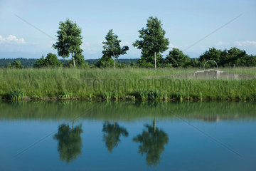 Rural landscape with reflections of trees in water
