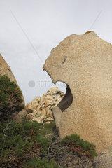 Granitfels bei Capo Testa