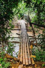 Laos  Vang Vieng  bridge over river in the jungle