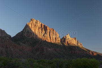 Jagged mountains in Zion National Park  Utah  USA