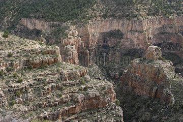 Desert canyon in Arizona  USA