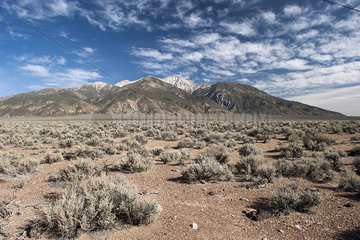 Desert and mountains in Nevada  USA
