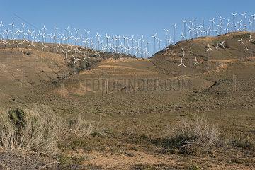 Wind farm in an arid region of California  USA