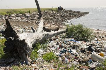Trash washed up on shore