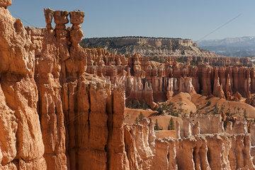 Hoodoo rock formations in Bryce Canyon National Park  Utah  USA