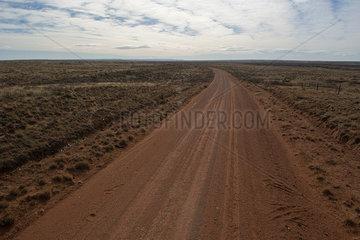 Dirt road through arid landscape