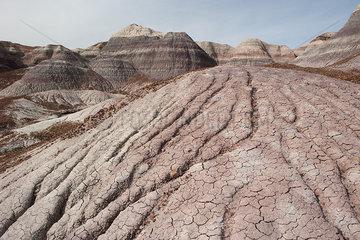Painted Desert region of Petrified Forest National Park  Arizona  USA