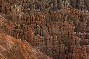 Rock hoodoos in Bryce Canyon National Park  Utah  USA