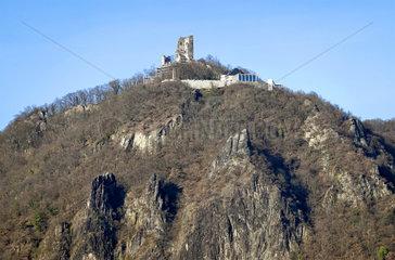 Drachenfels  Siebengebirge