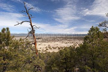 Scenic arid landscape