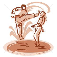 Karate match