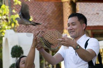 Tourist laesst einen Vogel frei im Wat Chang Man / Chiang Mai / Thailand /
