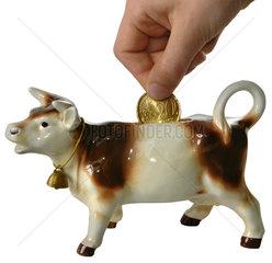 Kuh als Sparschwein  Symbol Agrarsubventionen