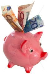 Sparschwein  Euroscheine