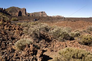 Santiago del Teide  Spanien  Nationalpark Teide