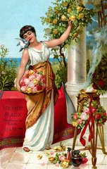 Frau sammelt Rosenblueten  um 1898
