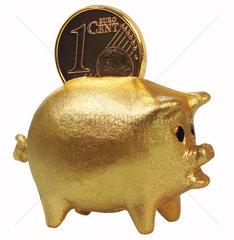 Symbol Sparschwein  Cent