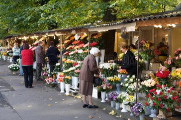 Riga  Lettland  Blumenmarkt