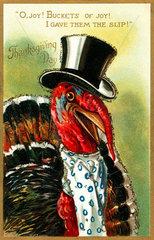 Thanksgiving Day  Truthahn  um 1911