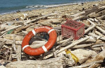 Rettungsring  Strandgut