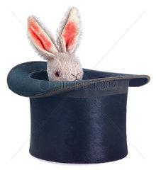 Zaubertrick  Kaninchen im Hut