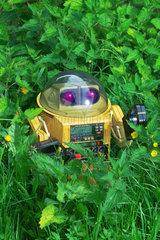 Roboter in der Natur