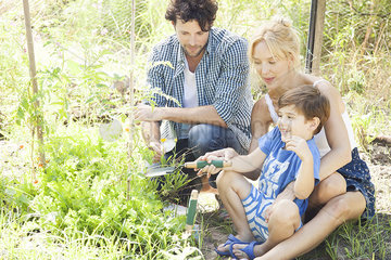 Parents teaching little boy how to garden