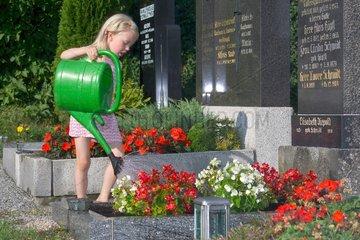 Maedchen am Grab des Opas  Blumen giessen